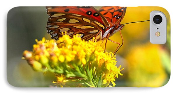 Pea Island Butterfly IPhone Case