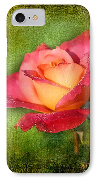 Peace Rose Phone Case by Joan McCool