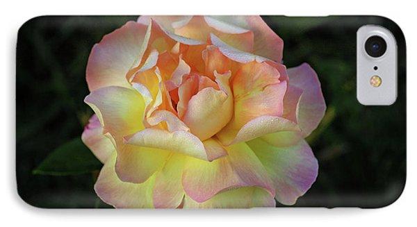 Peace Rose Phone Case by Sandy Keeton
