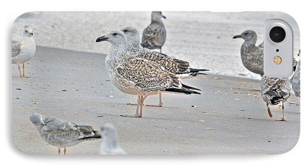 Peaceful Gulls IPhone Case
