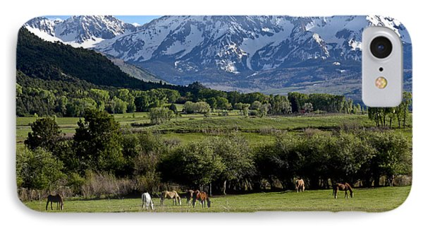 Peaceful Pastures IPhone Case by Marta Alfred