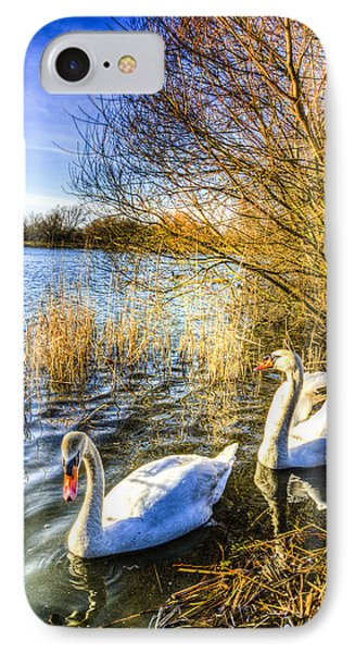 Peaceful Swans IPhone Case by David Pyatt