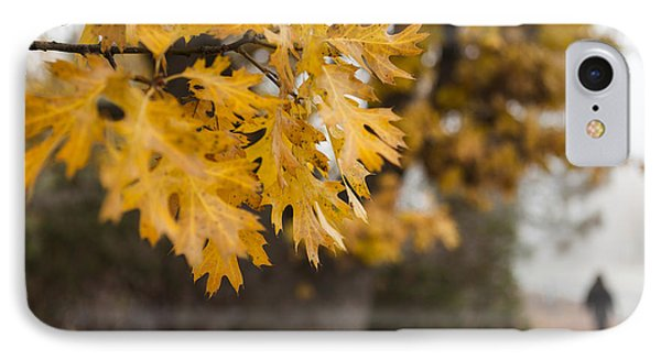 Peacefull Fall Walk IPhone Case by Scott Campbell