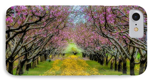 Peach Blossoms Dandelion Carpet IPhone Case by Henry Kowalski