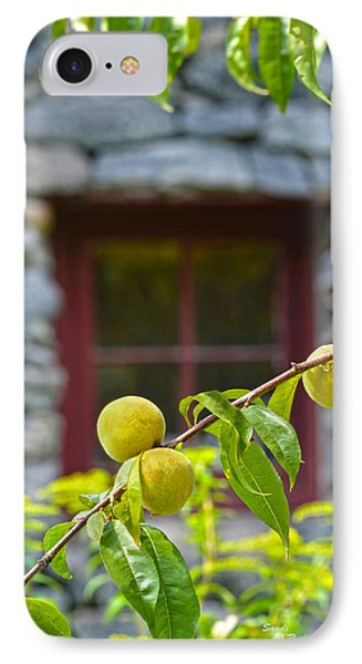 Peach Tree At The Old Mill Of Guilford Phone Case by Sandi OReilly