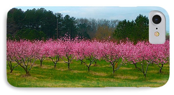 Peach Tree Grove By Jan Marvin IPhone Case