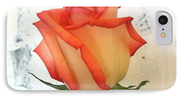 Peach Trim Rose IPhone Case by Marsha Heiken