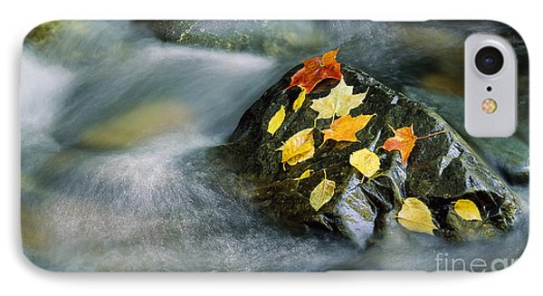 Peacham Brook In Fall IPhone Case by Alan L Graham