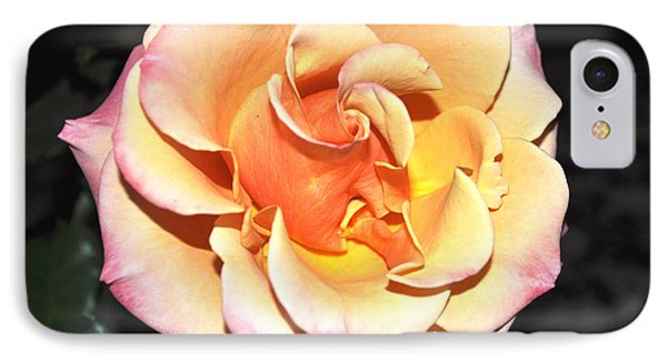 Peaches And Cream With A Dolop Of Lemon IPhone Case by Jay Milo
