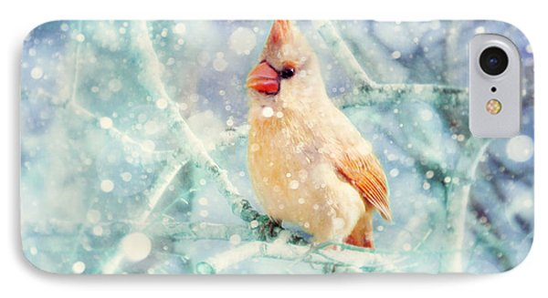 Peaches In The Snow IPhone Case