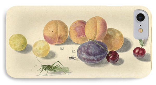 Peaches, Plums, Cherries And Two Insects IPhone Case by Quint Lox