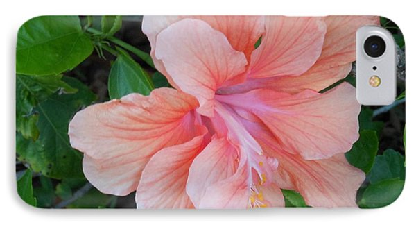Peachy Hibiscus IPhone Case by Kay Gilley