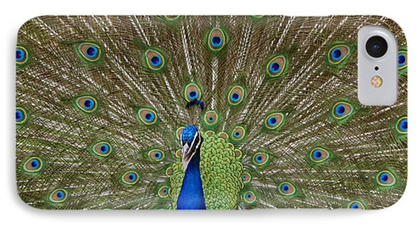 Peacock IPhone Case by Ernie Echols