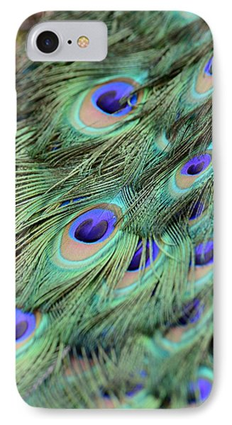 Peacock Feathers Phone Case by T C Brown