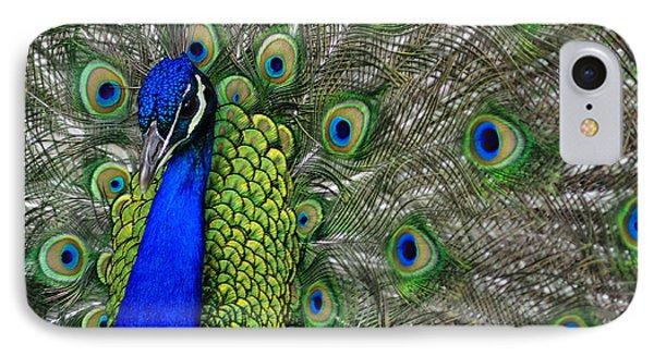 Peacock Head IPhone Case by Debby Pueschel