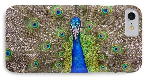IPhone Case featuring the photograph Peacock by Leigh Anne Meeks