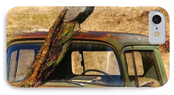 Peacock On Old Gmc Truck 3 IPhone Case