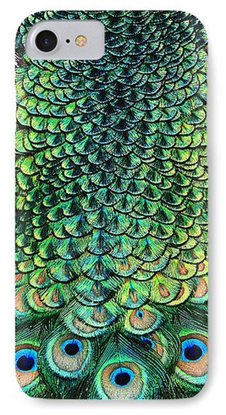 Peacock Pano IPhone Case by Clare VanderVeen