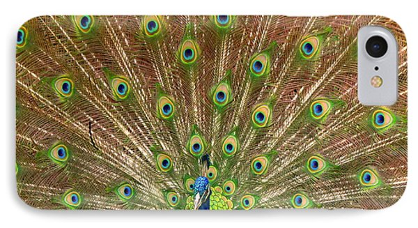 Peacock Proud IPhone Case by Myrna Bradshaw