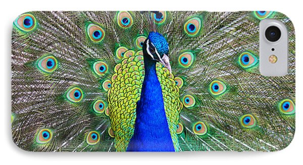 Peacock IPhone Case by Roger Becker