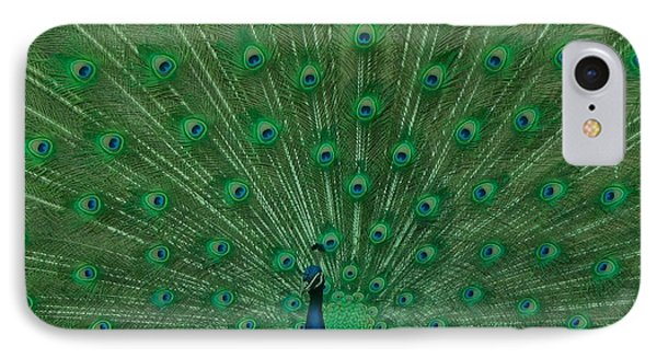 Peacock IPhone Case by Art Spectrum