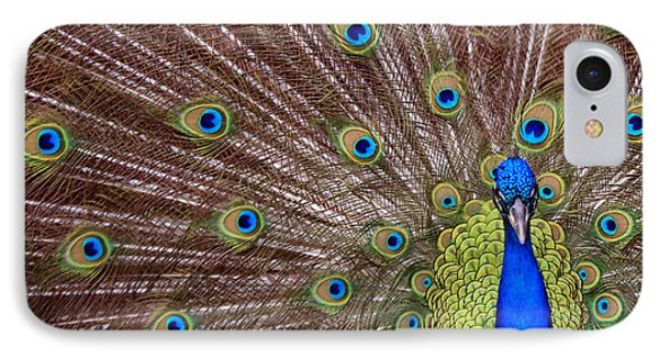 IPhone Case featuring the photograph Peacock Squared by Jaki Miller