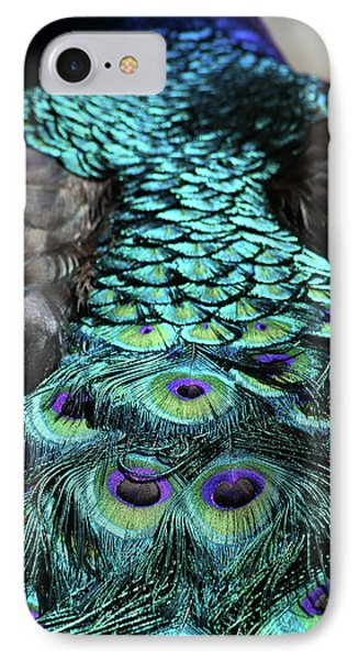 Peacock Trail Phone Case by Karol Livote