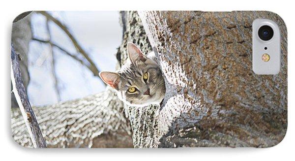 Peaking Cat IPhone Case