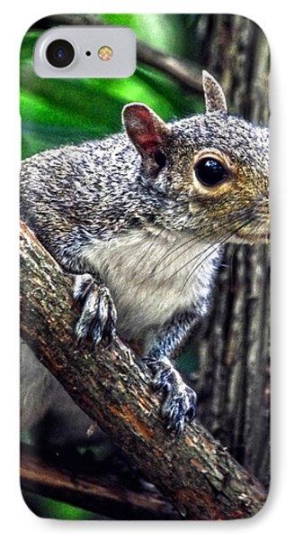 Peanut? Treat? Phone Case by Sandi OReilly
