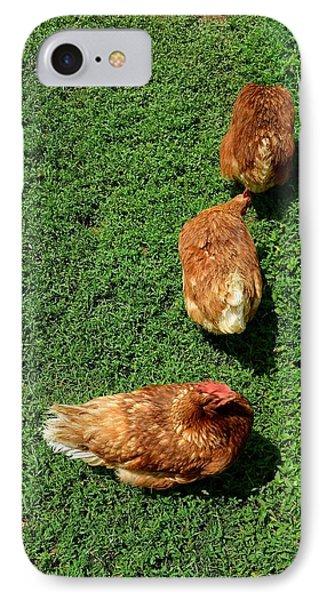 Pecking Order IPhone Case
