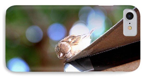 Peek A Boo Bird IPhone Case