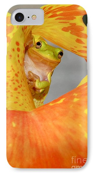 Peek A Boo IPhone Case by Kathy Gibbons