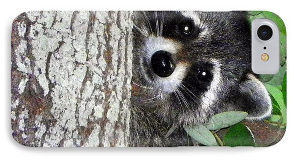 Peek A Boo Raccoon IPhone Case by Sheri McLeroy