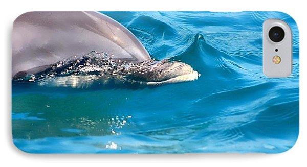 Peeking Dolphin IPhone Case