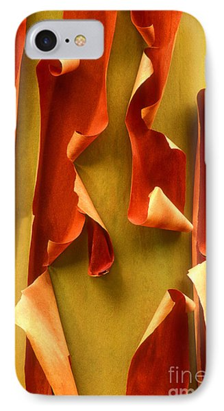Peeling Bark Pacific Madrone Tree Washington IPhone Case by Dave Welling