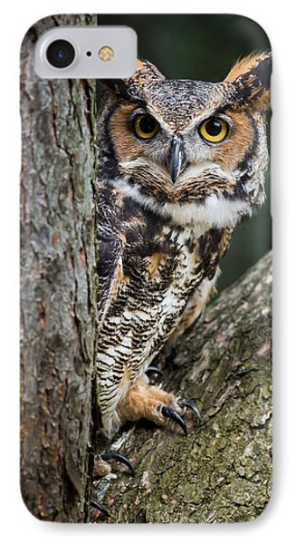 Peering Out IPhone Case by Dale Kincaid