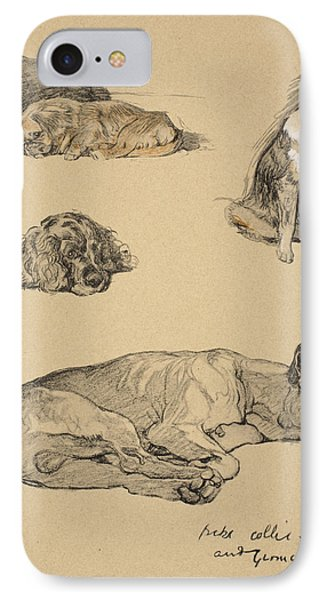 Peke, Collie, Spaniel And German Boxer IPhone Case by Cecil Charles Windsor Aldin