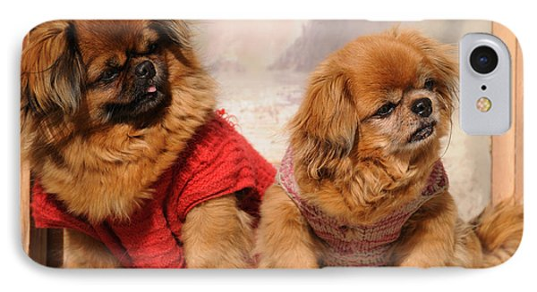 IPhone Case featuring the photograph Pekingese Pair by Jeremy Voisey