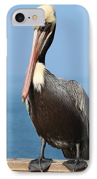 IPhone Case featuring the photograph Pelican - 3  by Christy Pooschke