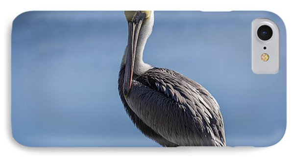 Pelican 02 IPhone Case