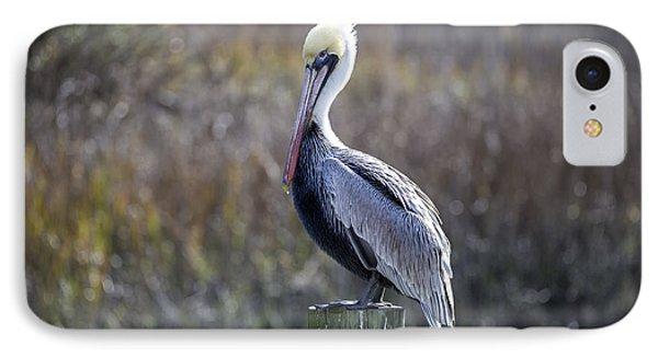 Pelican 04 IPhone Case