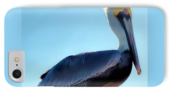 IPhone Case featuring the photograph Pelican 1 by Dawn Eshelman