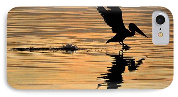 Pelican At Sunrise IPhone Case by Leticia Latocki