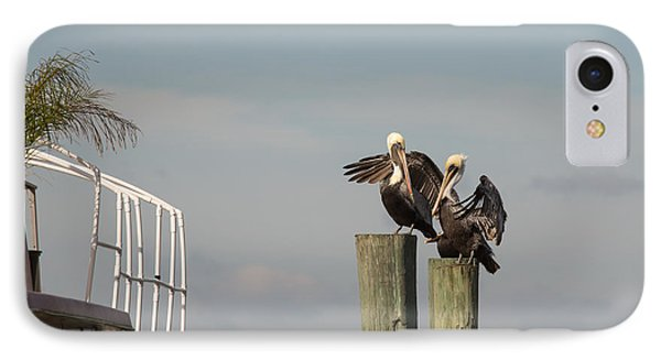 IPhone Case featuring the photograph Pelican Buddies by John M Bailey