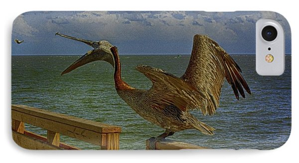 Pelican Eating IPhone Case by J Riley Johnson