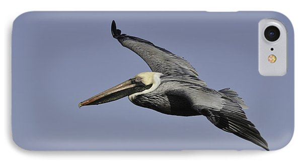 IPhone Case featuring the photograph Pelican In Flight by Bradford Martin