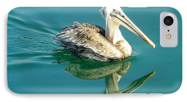IPhone Case featuring the photograph Pelican In San Francisco Bay by Clare Bevan