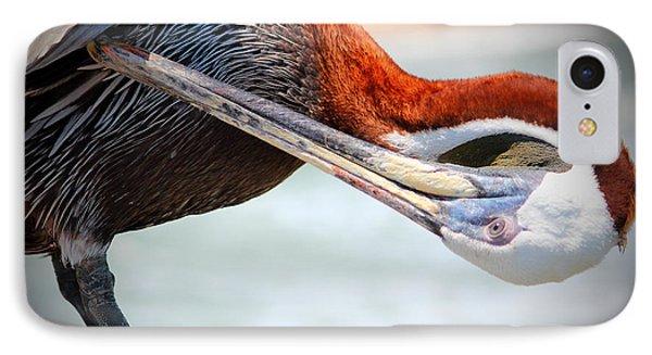 Pelican Itch IPhone Case