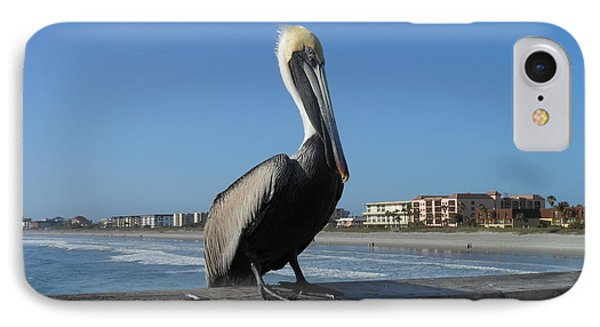 IPhone Case featuring the photograph Pelican  by Kay Gilley