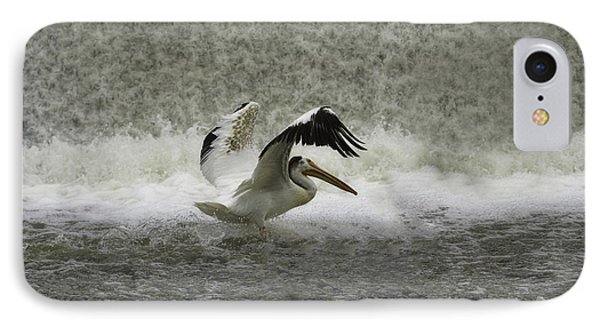 Pelican Landing In Color Phone Case by Thomas Young
